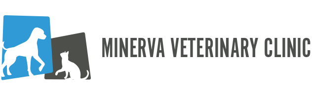 Minerva Veterinary Clinic